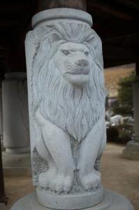 ライオン©摂理